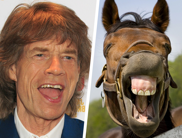 Celebrity Lookalikes | Celebrities That Look the Same ...