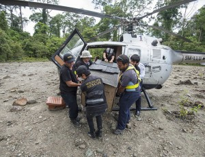 Natlaie is removed from the helicopter ready for release