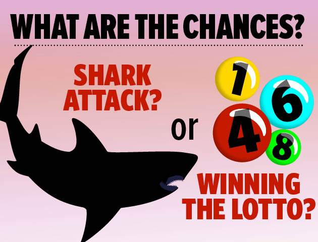 chances of winning the lottery As tony bredehoeft said, buy more tickets this is the only thing you can do (assuming that the lottery is fair - there may be approaches that can be used if you are.