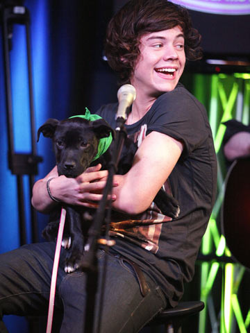 Harry Styles | One Direction | IHeartRadio | Pictuers | Photos | New | Celebrity News