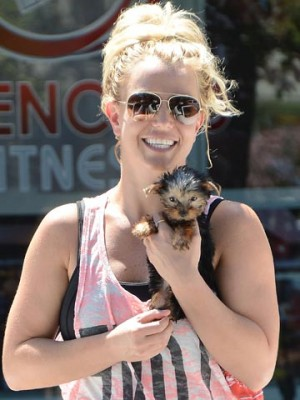 Britney Spears | Celebrity Spy | Pictures | Photos |