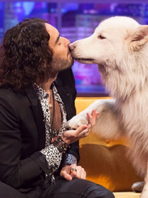 Russell Brand | Pictures | Photos | New | Celebrity News