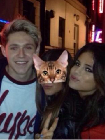 selena gomez og niall horan dating 2014