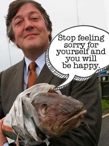 Stephen Fry FryDay poster | Now magazine | news | celebrity | pictures | photos