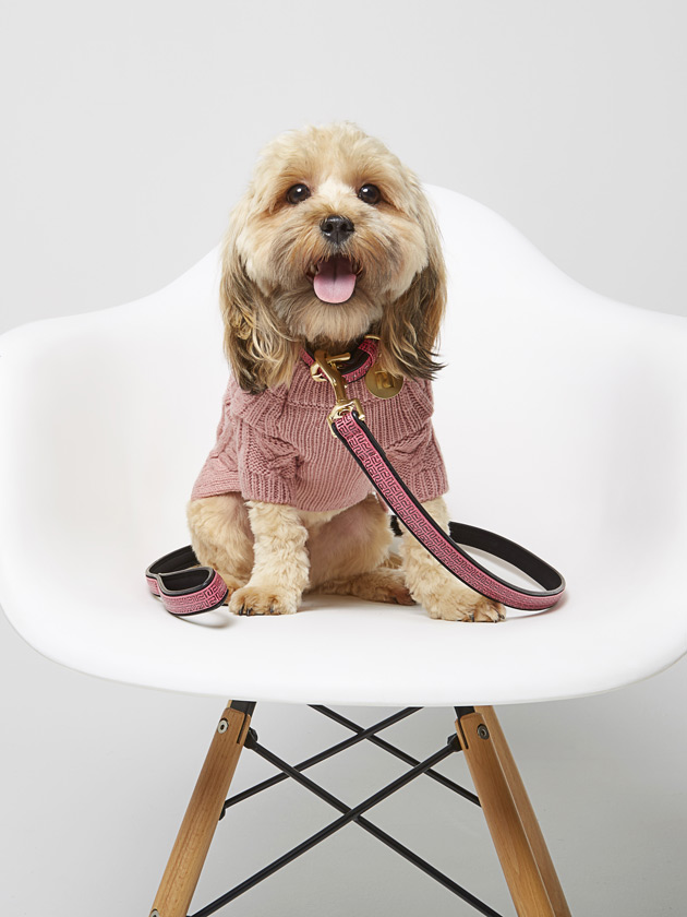 Happy Hump Day Check Out River Island S Latest Collection