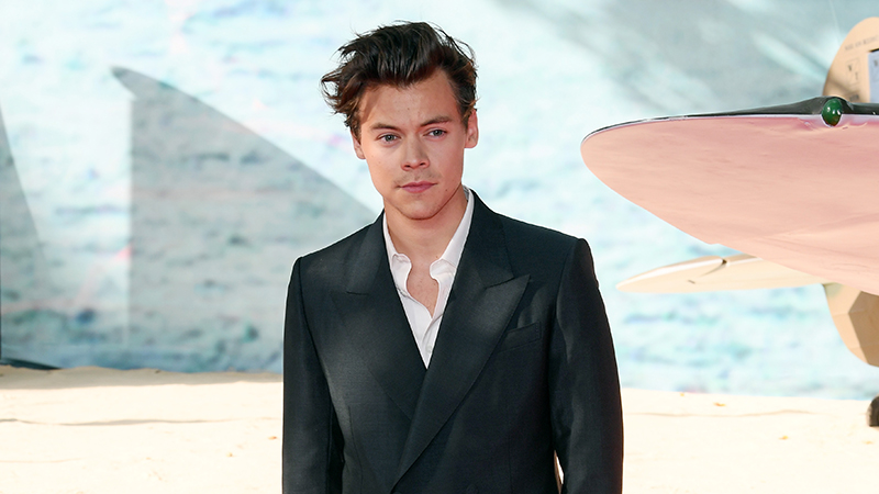 Harry Styles 'besotted' with Victoria's Secret model Camille Rowe