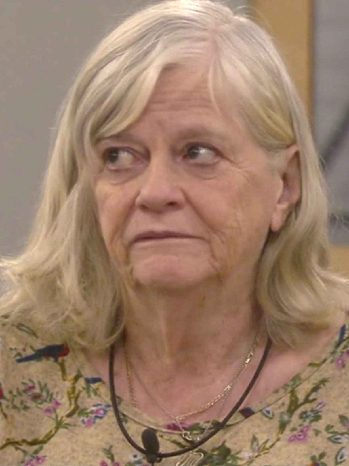 Celebrity Big Brother Fans Baffled By Ann Widdecombe S