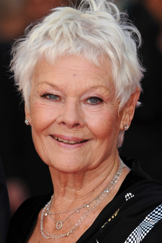 Judi Dench Hairstyle Hot | Hair