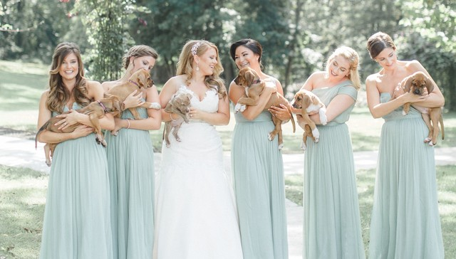 Wedding trends 2017: From the most magical to the daring & different!