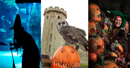 Try our pick of the spookiest Halloween events - if you dare!