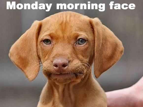 Monday Mornings