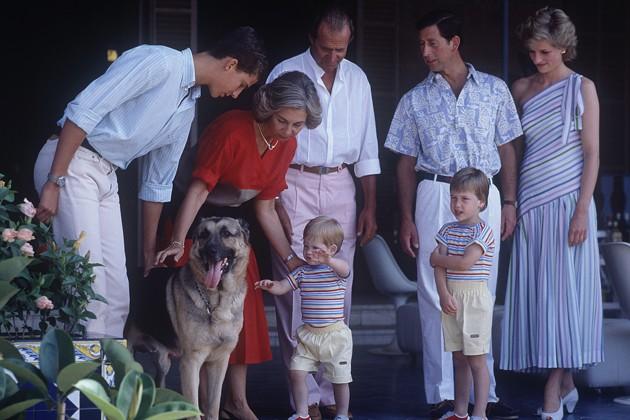 Prince Charles Princess Diana Prince William And Prince