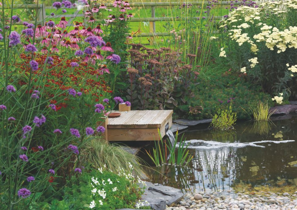 The ultimate guide to water features in your garden for Wildlife pond design uk