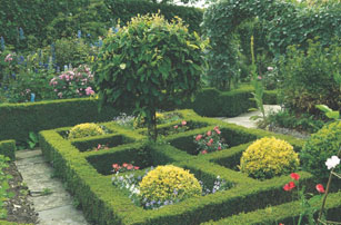 Which Plants To Use As Edging In A Parterre Garden