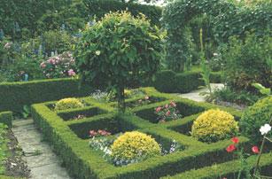 Which plants to use as edging in a parterre garden for Parterre vegetable garden design
