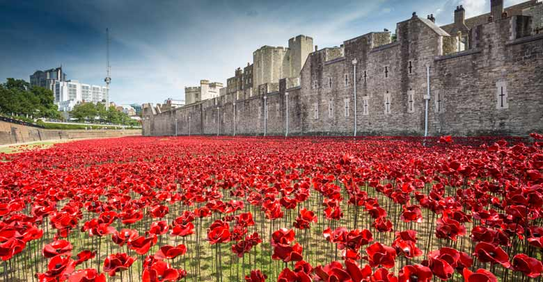 Tower Of London Poppies Beautiful Ww1 Centenary Memorial