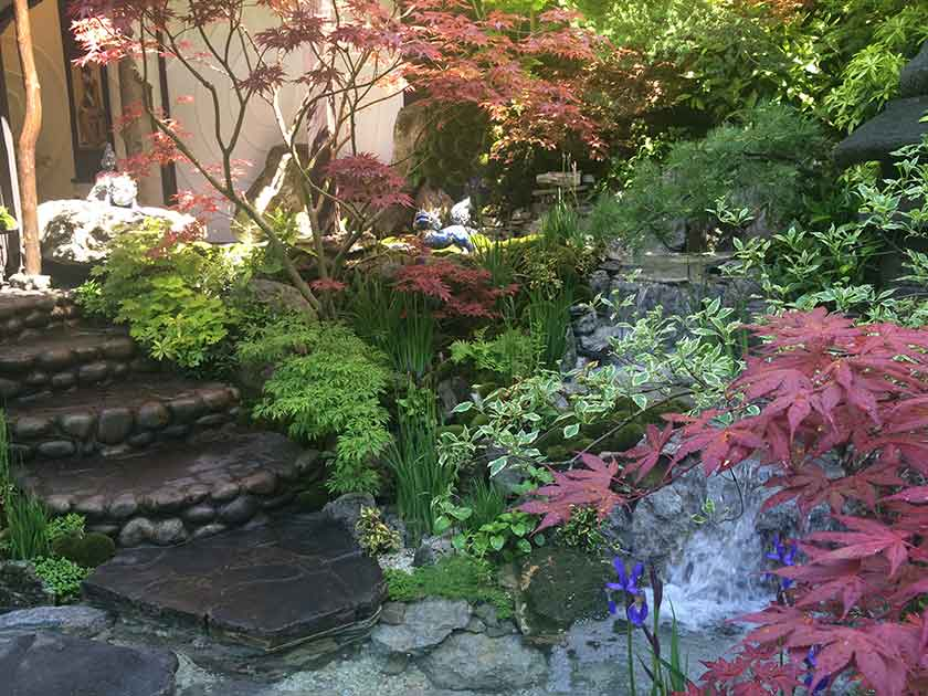 Japanese Inspired Garden At Chelsea Flower Show 2015