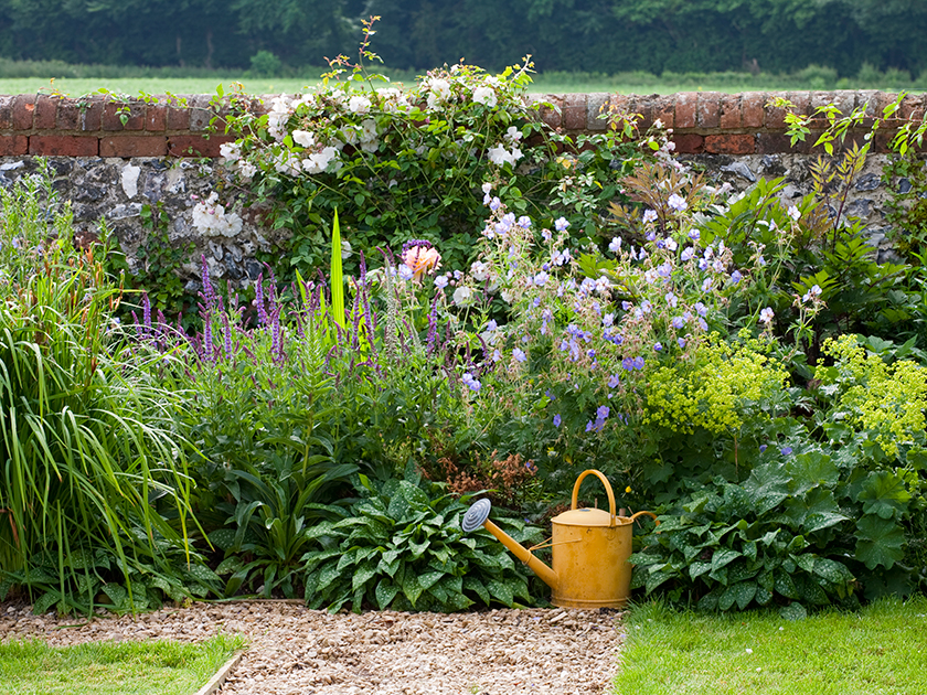 Grow An English Country Garden Woman S Weekly