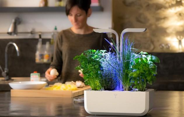 Véritable Indoor Garden