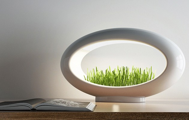 Grasslamp is a tiny little garden and light for your desk Live Smart