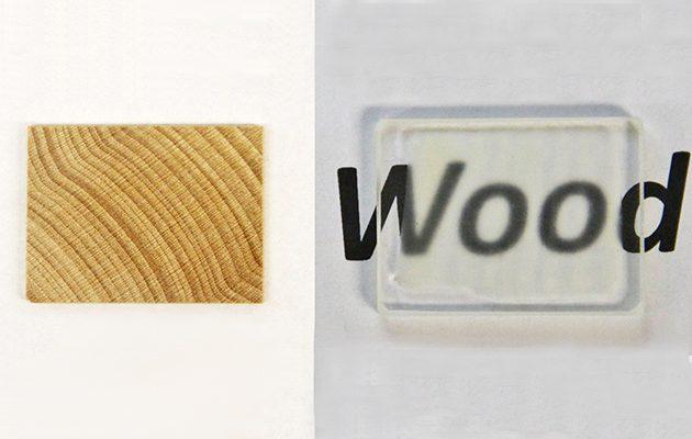 See-through wood