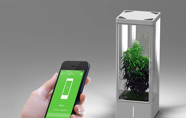 Grow Box Creates A Tiny Tropical Climate In Your Home For