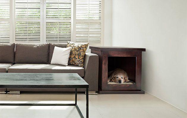 Zencrate smart dog shelter