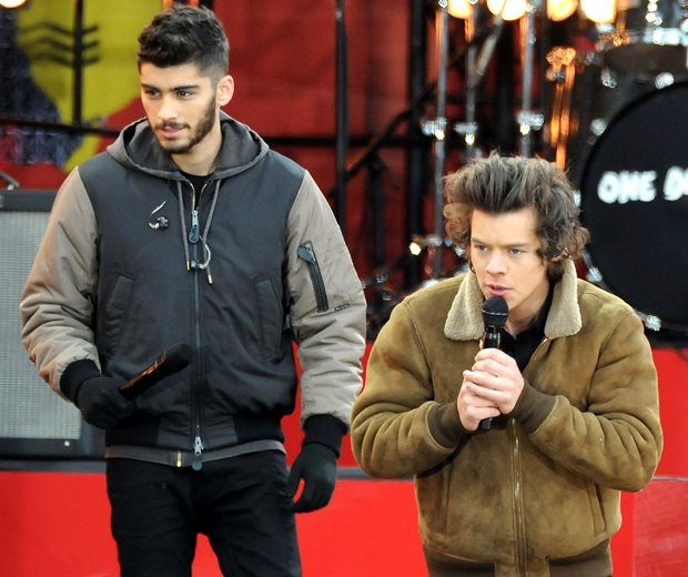 zayn malik and harry styles on stage one direction