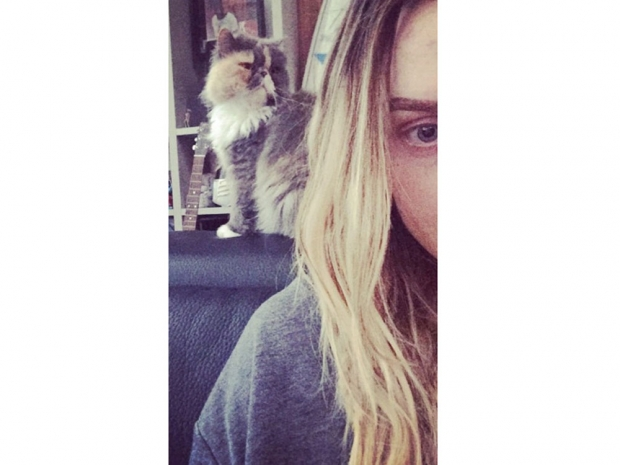 Perrie Edwards posts an Instagram picture with her cat Prada