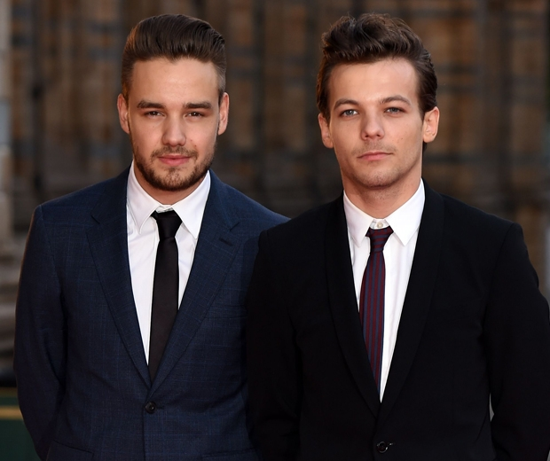 liam payne and louis tomlinson one direction
