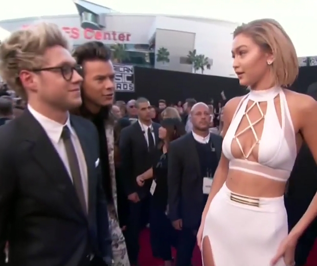 Gigi had a seriously awkward encounter with Harry Styles on the AMAs red carpet.