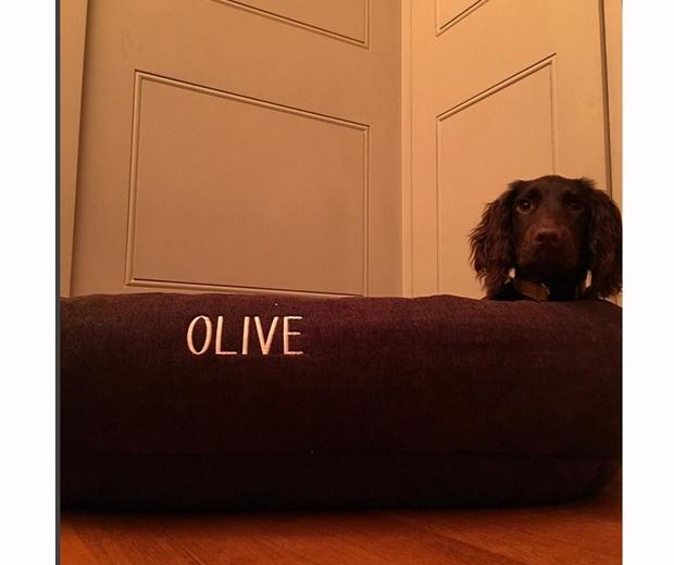 olive beckham