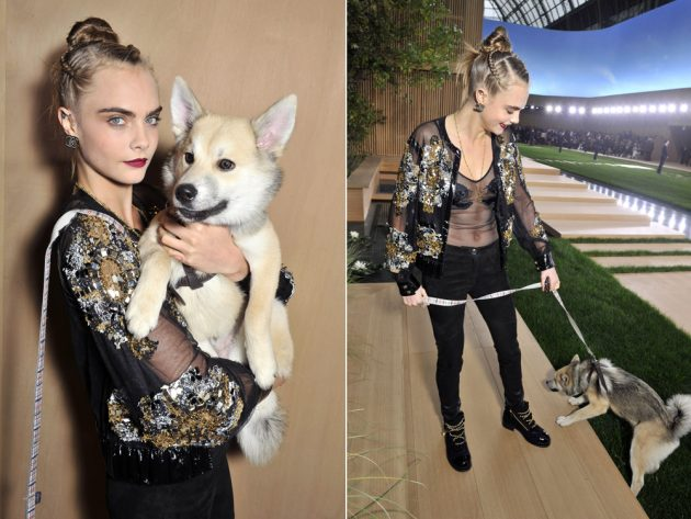 Cara brought her pet dog, Leo, with her to the Chanel show