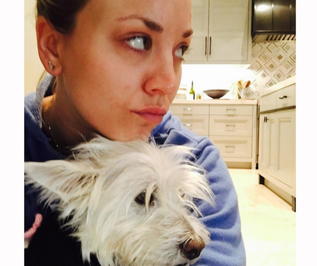 kaley cuoco dog chester dies