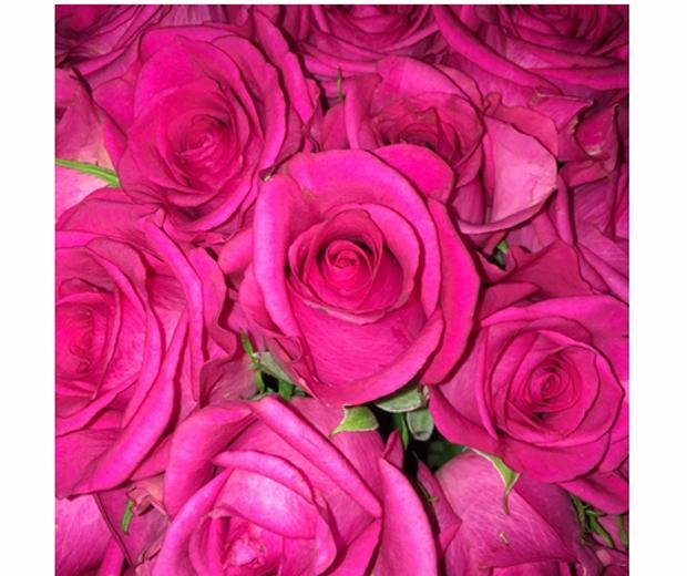 pink roses kourtney kardashian