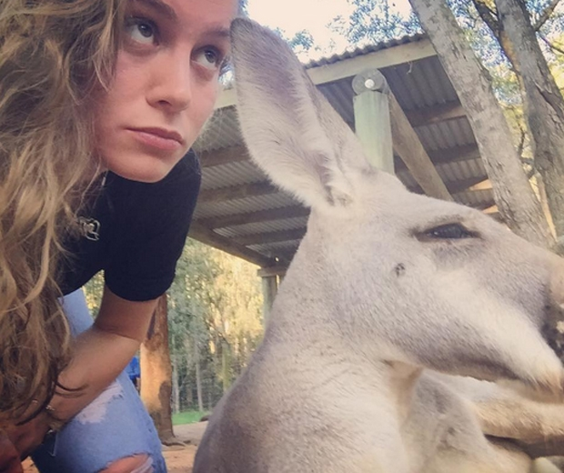 brie larson with a kangaroo on instagram