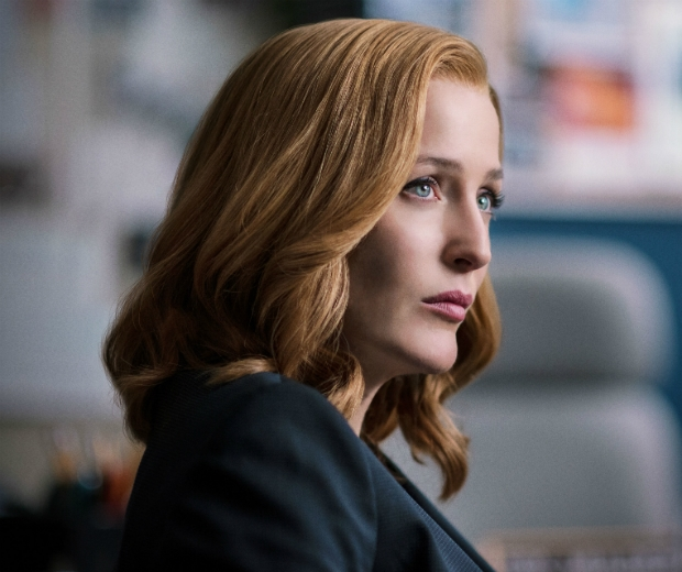 Gillian has recently reprised her role as Agent Scully in the X Files