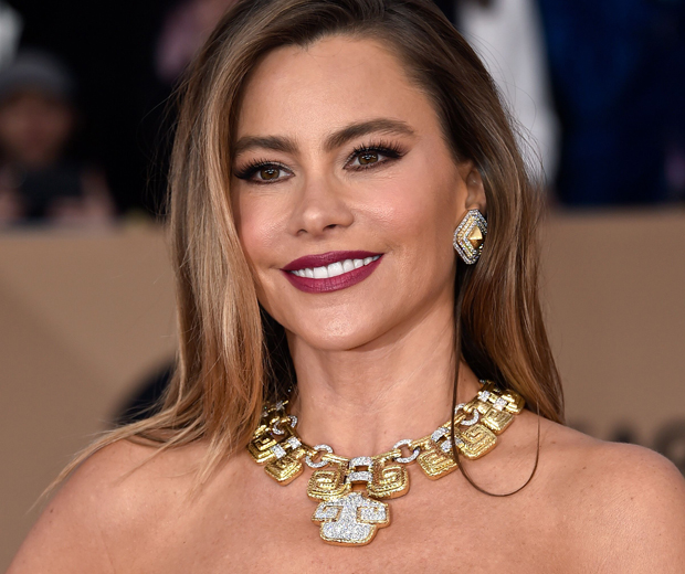 Sofia Vergara is the queen of smoky brows