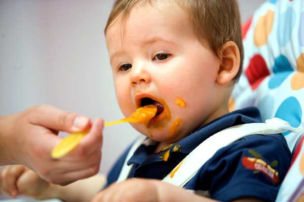 Make own baby food