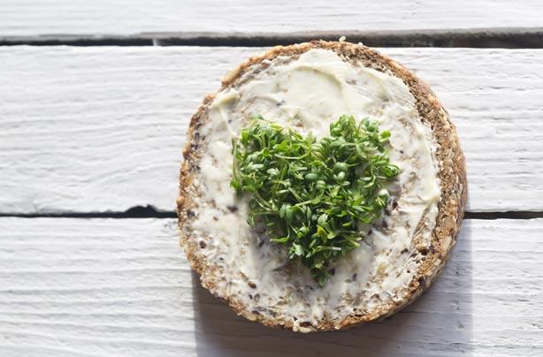 Cress on whole grain bread