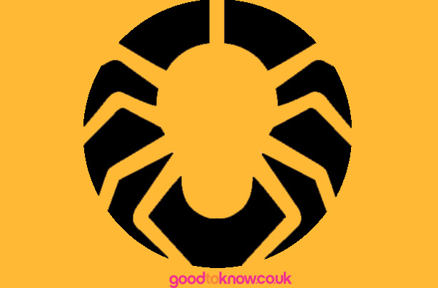 Aimless moments: brown recluse spider pumpkin carving template.