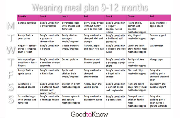 baby food meal planner 9 12 months