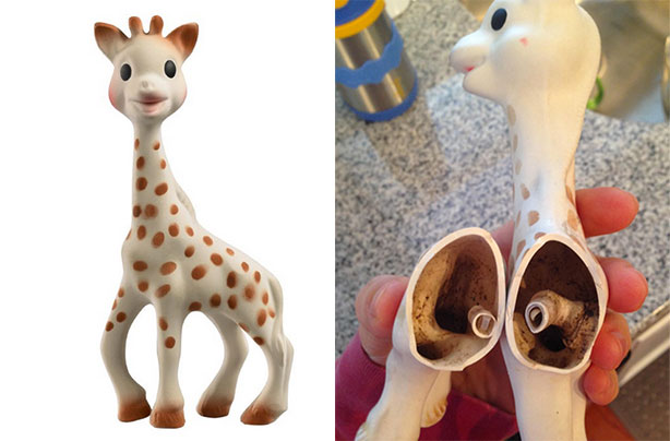 Parents Finding Mold In Sophie the Giraffe Teething Toy ...