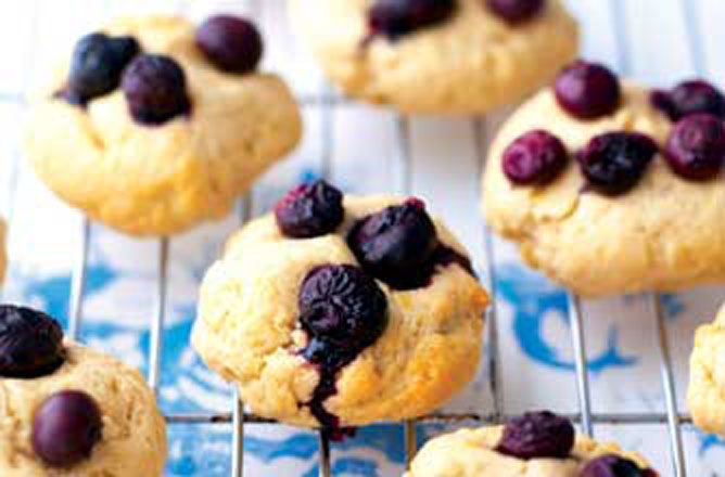 Weight Watchers Blueberry Cookies