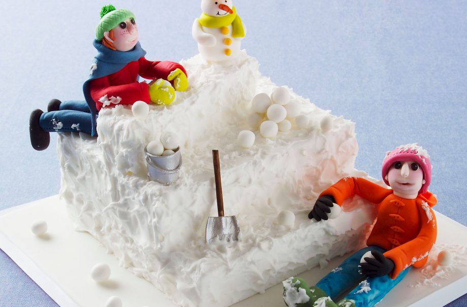Snow Much Fun Cake
