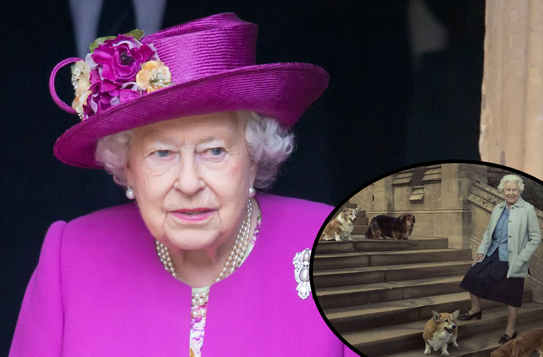 the queen with corgi willow