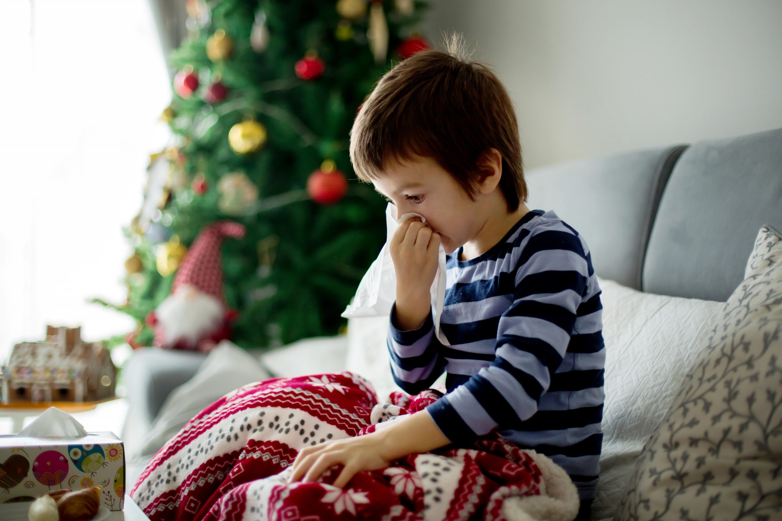 Christmas tree syndrome: How to tell if you're allergic to your Christmas tree