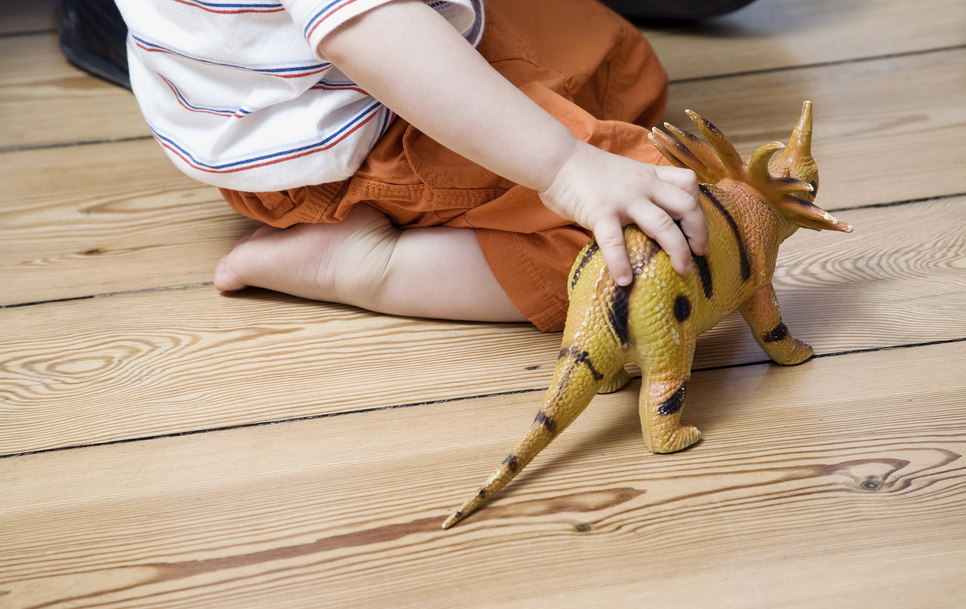 boy with dinosaur toy
