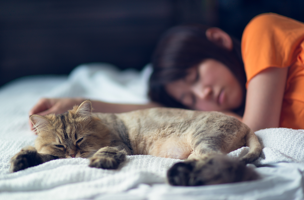 Your pet's sleeping position can say a lot about how they feel about you, research suggests