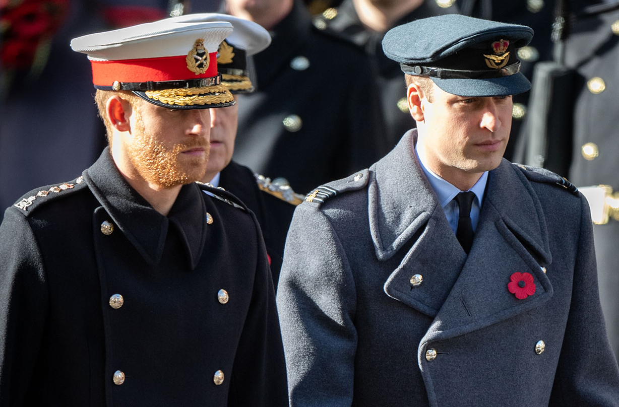 prince william prince harry mourn great aunt anne wake walker